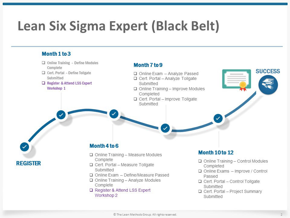 Lean Six Sigma Expert (Black Belt)